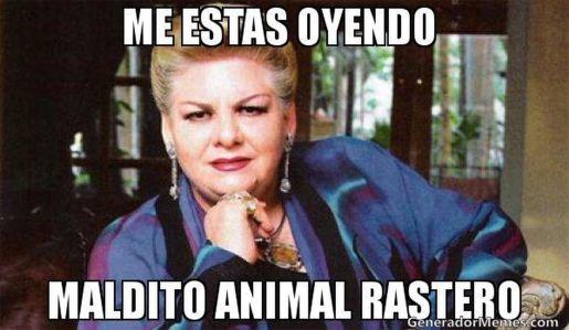 Meme-Paquita-Barrio_890621293_8751220_1760x1024